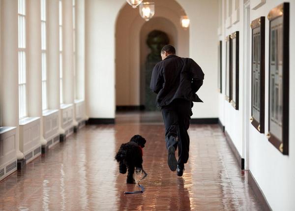 Контент-маркетинг VSамериканский президент: счастливы вместе.