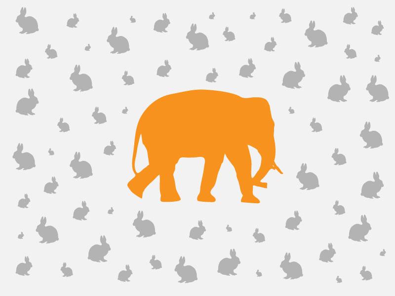 Elefants