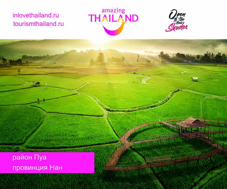 Баннер для компании amazing THAILAND